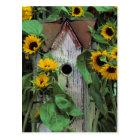 USA, Pennsylvania. Birdhouse and garden Postcard