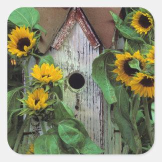 USA, Pennsylvania. Birdhouse and garden Square Sticker
