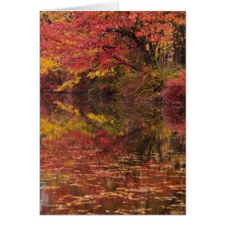 USA, Pennsylvania, Delaware Water Gap National Card