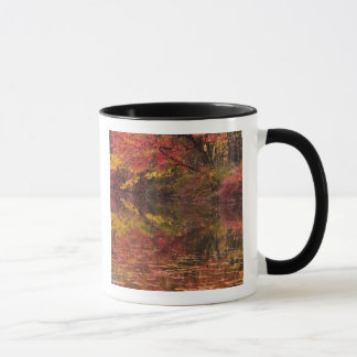 USA, Pennsylvania, Delaware Water Gap National Mug