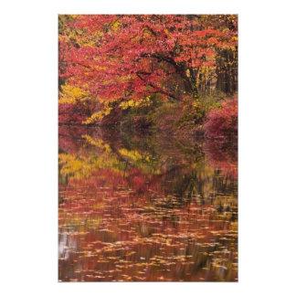 USA, Pennsylvania, Delaware Water Gap National Photographic Print