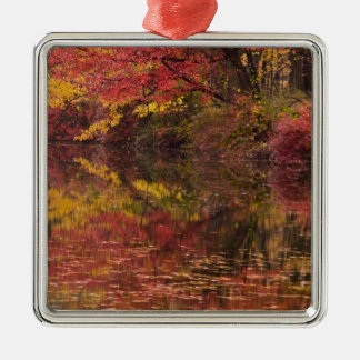 USA, Pennsylvania, Delaware Water Gap National Silver-Colored Square Decoration
