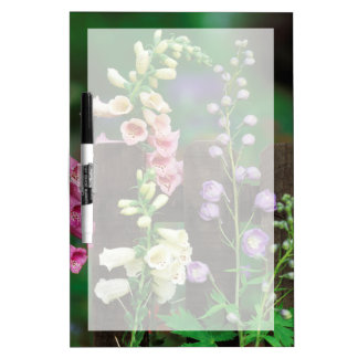 USA, Pennsylvania. Foxglove and delphinium Dry Erase Board