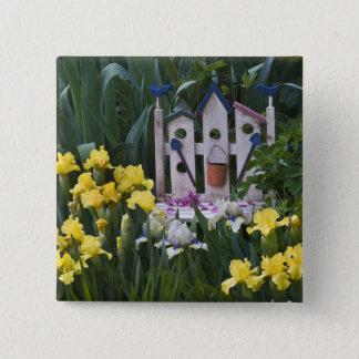USA, Pennsylvania. Garden irises grow around 15 Cm Square Badge