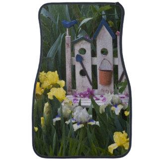 USA, Pennsylvania. Garden irises grow around Car Mat