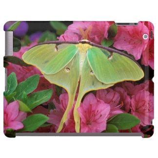 USA, Pennsylvania. Luna moth on pink clematis iPad Case