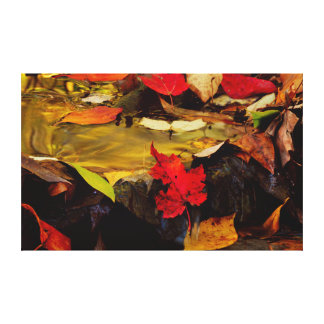 USA, Pennsylvania, Pocono Mountains 1 Canvas Print