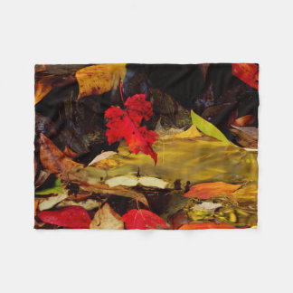 USA, Pennsylvania, Pocono Mountains 1 Fleece Blanket