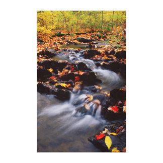 USA, Pennsylvania, Pocono Mountains 2 Canvas Print