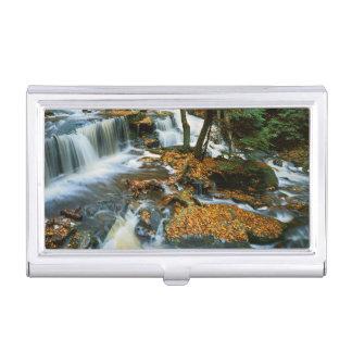 USA, Pennsylvania, Ricketts Glen State Park Business Card Holder