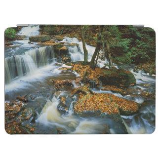 USA, Pennsylvania, Ricketts Glen State Park iPad Air Cover