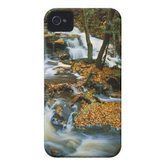 USA, Pennsylvania, Ricketts Glen State Park iPhone 4 Cases