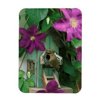 USA, Pennsylvania. Wren in birdhouse Rectangular Photo Magnet