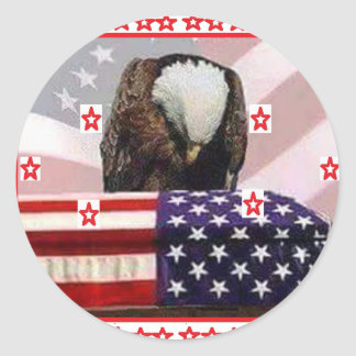 USA.png EAGLE Classic Round Sticker