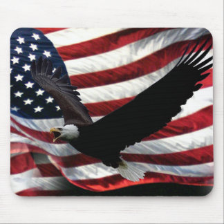 USA PRIDE MOUSE MAT