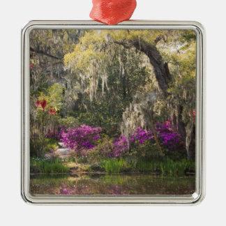 USA, South Carolina, Charleston. Cypress Trees 2 Christmas Ornament