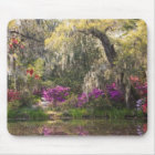 USA, South Carolina, Charleston. Cypress Trees 2 Mouse Mat