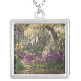 USA, South Carolina, Charleston. Cypress Trees 2 Silver Plated Necklace