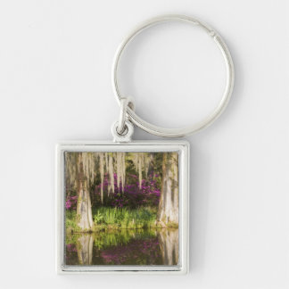 USA, South Carolina, Charleston. Cypress Trees Key Ring