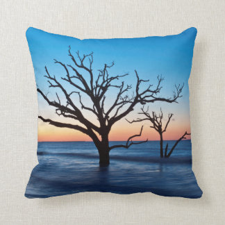 USA, South Carolina, Edisto Island, Botany Bay Throw Pillow