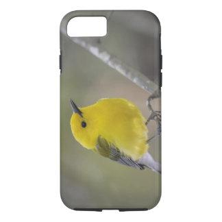 USA, South Carolina, Harleyville. Close-up of iPhone 8/7 Case