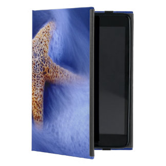 USA, South Carolina, Hilton Head Island. Two Cases For iPad Mini