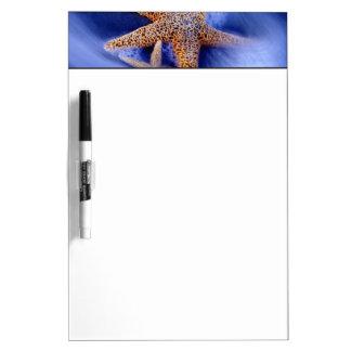 USA, South Carolina, Hilton Head Island. Two Dry Erase Board