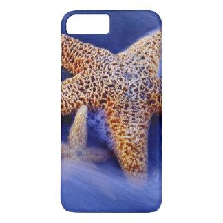 USA, South Carolina, Hilton Head Island. Two iPhone 8 Plus/7 Plus Case