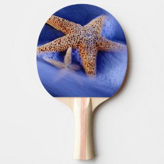 USA, South Carolina, Hilton Head Island. Two Ping Pong Paddle