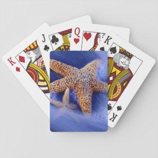 USA, South Carolina, Hilton Head Island. Two Playing Cards