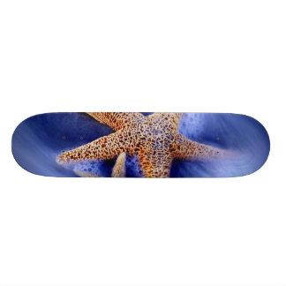 USA, South Carolina, Hilton Head Island. Two Skateboards