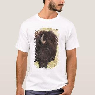 USA, South Dakota, American bison (Bison bison) 2 T-Shirt