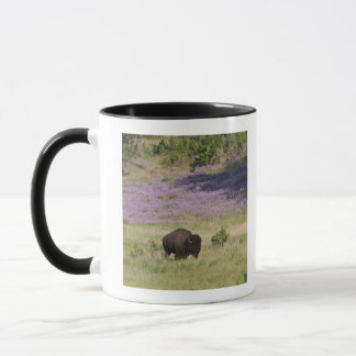 USA, South Dakota, American bison (Bison bison) Mug