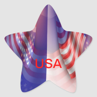 USA STAR STICKER