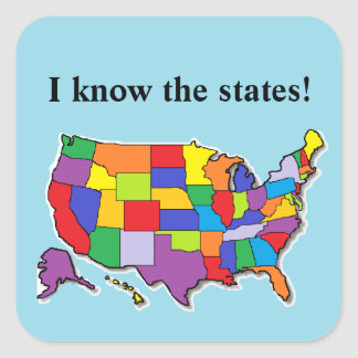USA Stickers Square Sticker