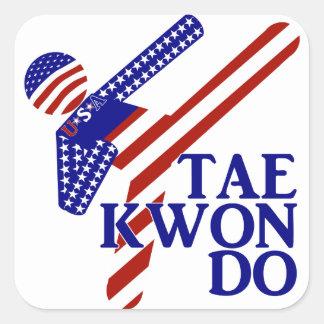 USA Taekwondo Kick (2) Square Sticker