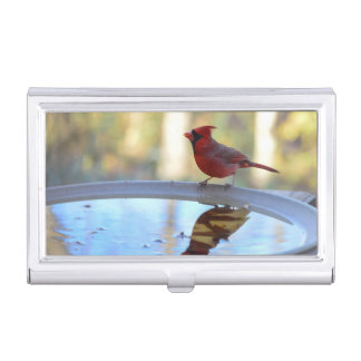 USA, Tennessee, Athens. Backyard Bird Bath 2 Case For Business Cards