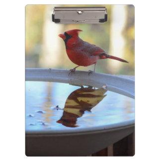 USA, Tennessee, Athens. Backyard Bird Bath 2 Clipboard