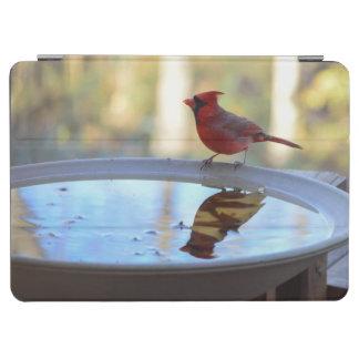 USA, Tennessee, Athens. Backyard Bird Bath 2 iPad Air Cover