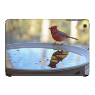 USA, Tennessee, Athens. Backyard Bird Bath 2 iPad Mini Covers