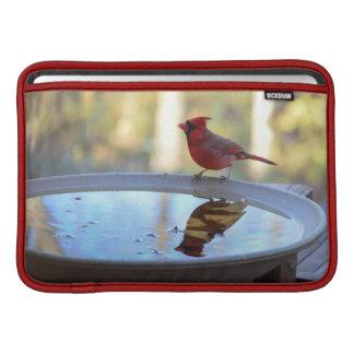 USA, Tennessee, Athens. Backyard Bird Bath 2 MacBook Sleeve