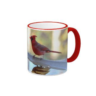 USA, Tennessee, Athens. Backyard Bird Bath 2 Ringer Mug
