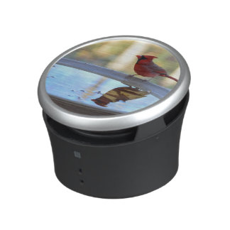 USA, Tennessee, Athens. Backyard Bird Bath 2 Speaker