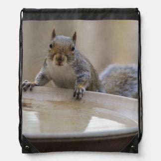 USA, Tennessee, Athens. Backyard Bird Bath Cinch Bag