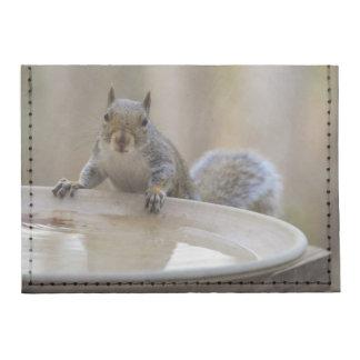 USA, Tennessee, Athens. Backyard Bird Bath Tyvek® Card Wallet