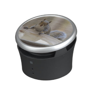 USA, Tennessee, Athens. Backyard Bird Bath Speaker