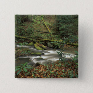 USA, Tennessee. Big South Fork National River 15 Cm Square Badge