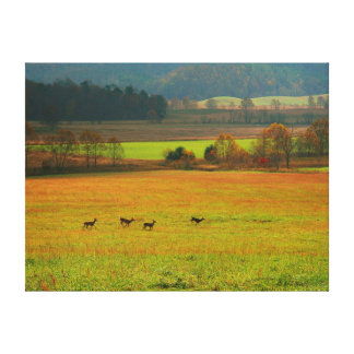 USA, Tennessee. Cades Cove In Smoky Mountain 2 Canvas Print