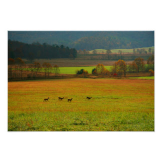 USA, Tennessee. Cades Cove In Smoky Mountain 2 Poster