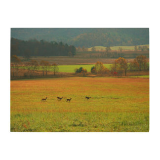 USA, Tennessee. Cades Cove In Smoky Mountain 2 Wood Wall Art
